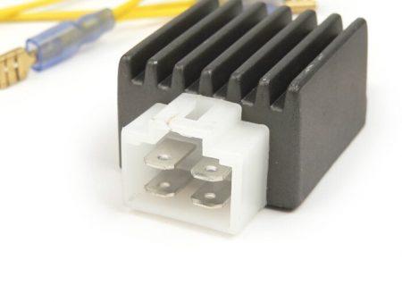 BGM6696-Voltage regulator -4-plug BGM PRO 6V AC/DC- universal