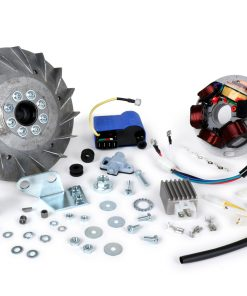 BGM6661PRO Zündung-Set -BGM Pro elektronisch Fast Touring 1850g- Vespa Sprint150 (VLB1T), Sprint Veloce, GT125 (VNL2T), GTR125 (VNL2T), Super, GL150 (VLA1T), VNA, VBA, VNB, VBB – 1850g